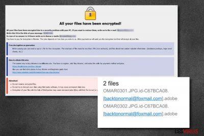 .Adobe-Dateienvirus