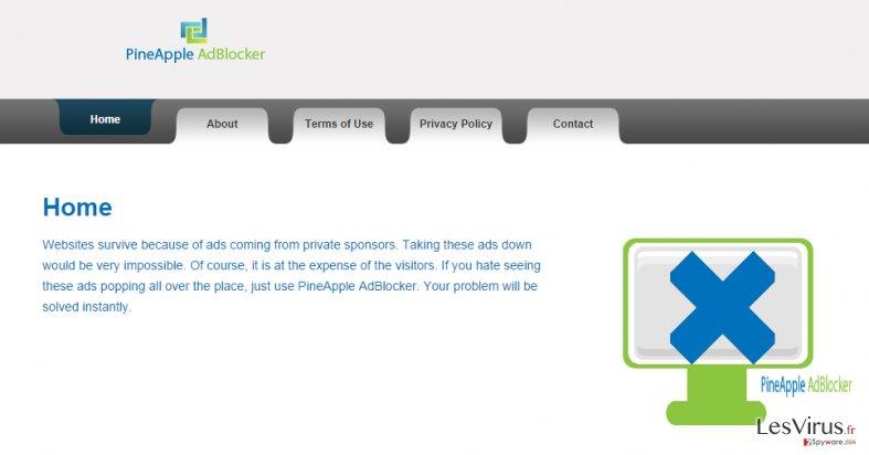 Anzeigen von PineApple AdBlocker-Screenshot