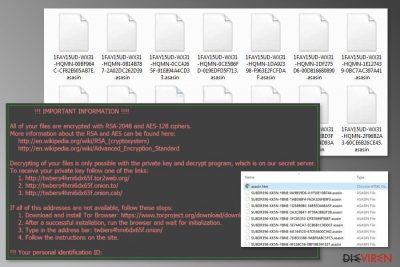 Abbildung Asasin-Erpressersoftware