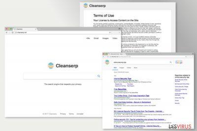 Abbildung Cleanserp.net