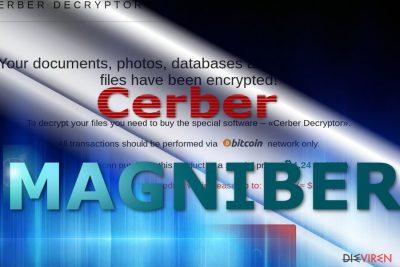 Zahlungsseite Magniber-Virus