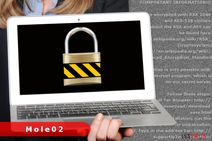Abbildung Mole02-Erpressersoftware