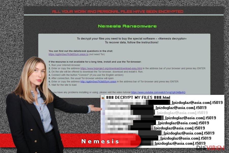 Beispiel Nemesis-Erpressersoftware