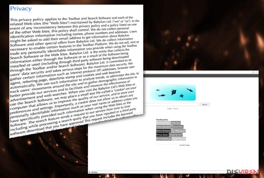 Opti-Page.com-Virus