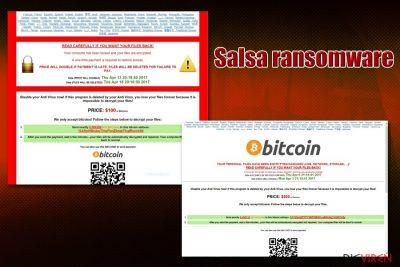 Salsa ransomware virus