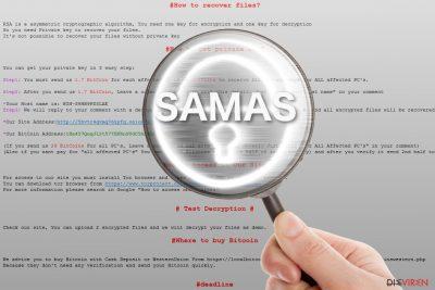 Das Erpressungsprogramm Samas unter die Lupe genommen