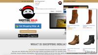 shopping-ninja-website-shopping-ninja-ads-example_de.png