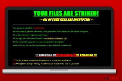 Screenshot Erpresserbrief des Striked-Virus