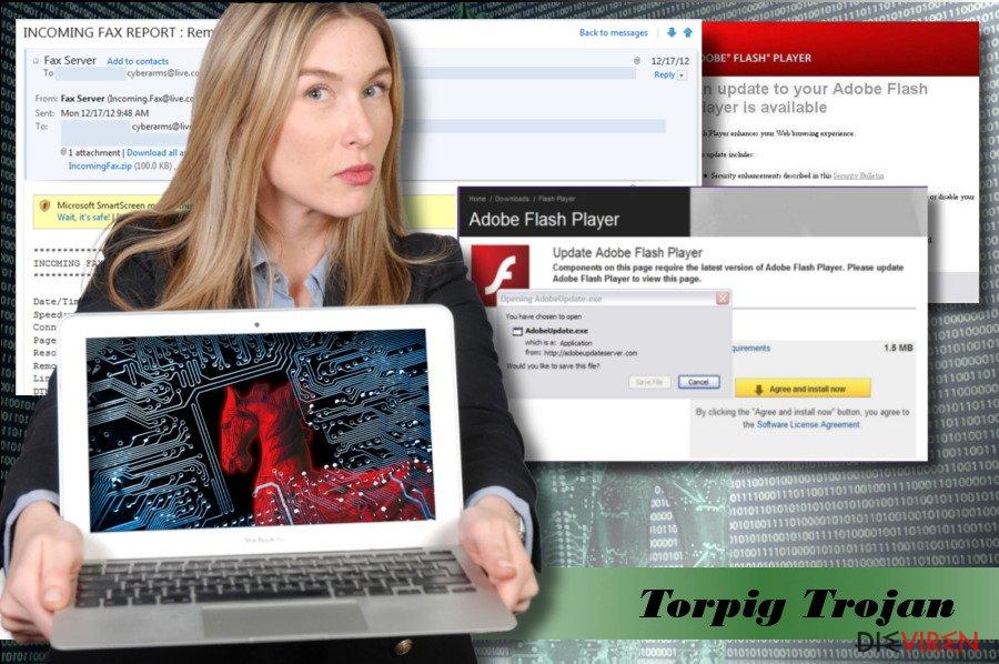Ein Bild des Torpig-Virus