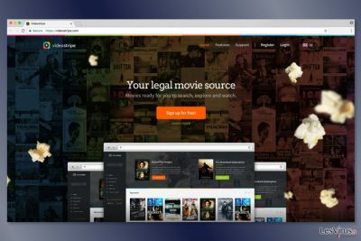 Screenshot der Webseite von VideoStripe