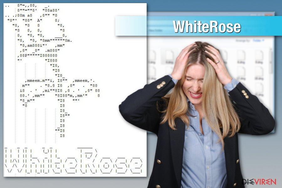 Angriff der WhiteRose-Erpressersoftware