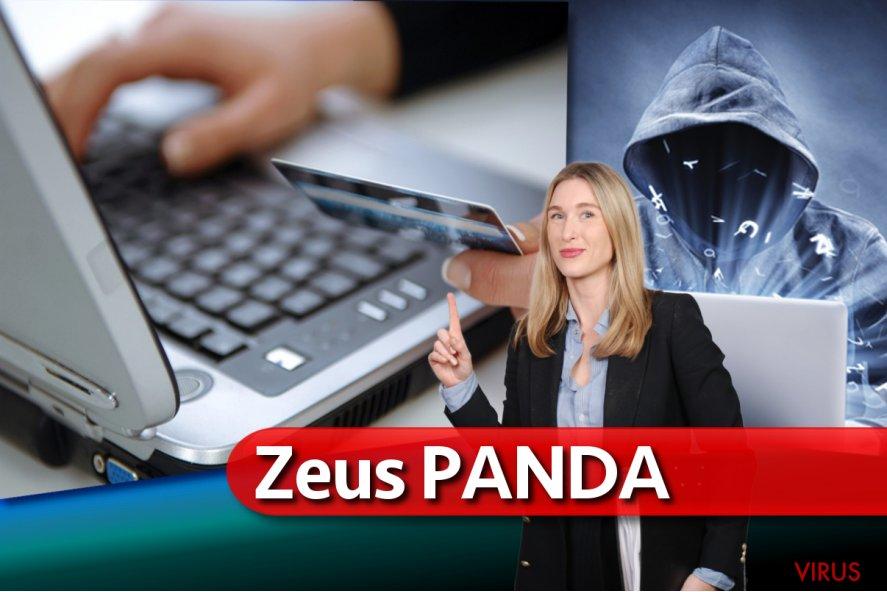Schadsoftware Zeus Panda Banker