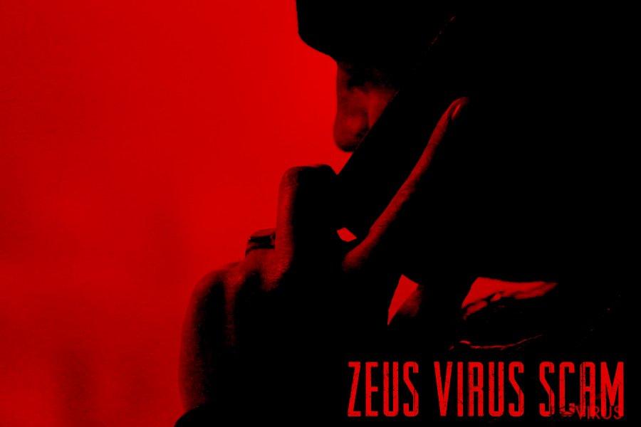 Zeus-Trojaner-Screenshot